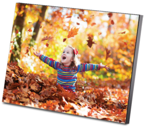 Wall Mount Photo Panel 12 x 16''