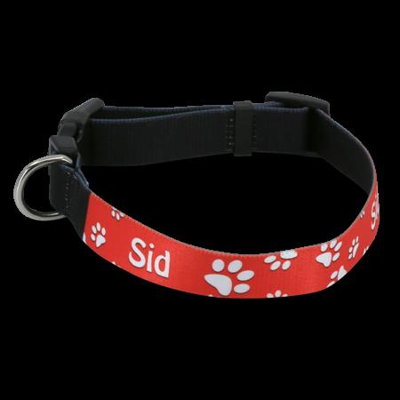Small Printable Dog Collar