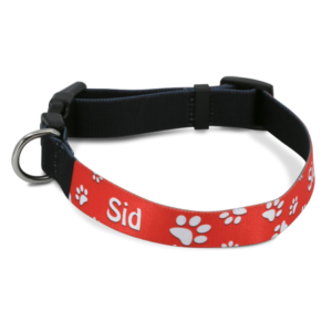 Large Printable Dog Collar