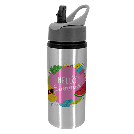 Silver Drink Bottle with Handle 22oz