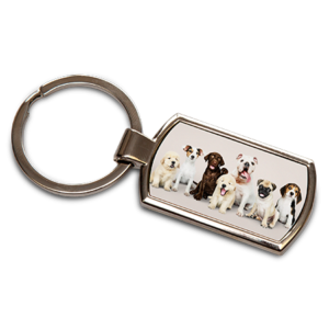 Rectangle Keyring with Insert