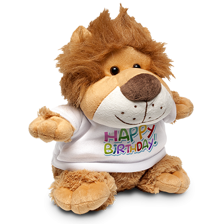 Lion Soft Toy & Shirt